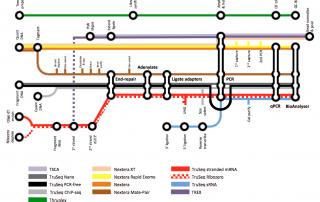 NGS tube map