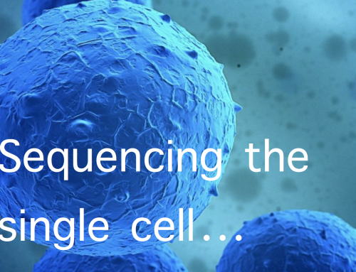 The 5 hardest things about single-cell sequencing
