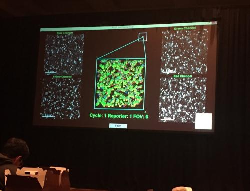 Nanostring Hyb&Seq