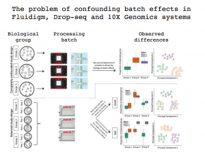 Confounding effects of different single-cell RNA-Seq systems