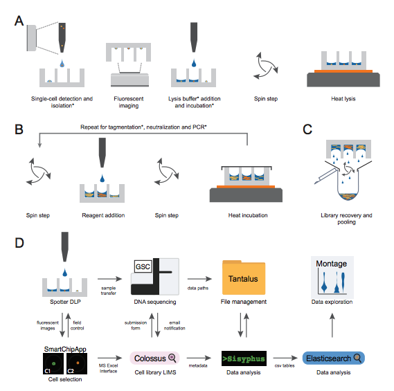 Single-cell cancer sequencing on BioRxiv